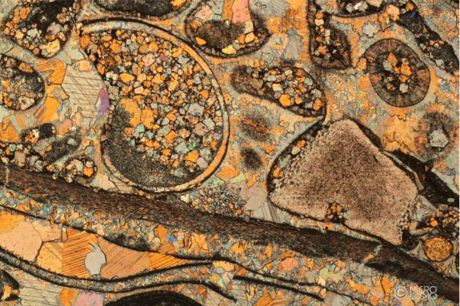 Seconda tappa per Microcosmoart Listening: dopo il Bambin Gesu' di Pinturicchio,l'immagine al microscopio delle Conchiglie fossili dolomitiche.