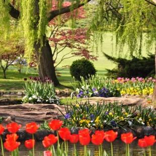 Intervista al Parco Giardino Sigurtà,uno dei tesori naturalistici che accoglie milioni di visitatori da tutto il mondo.