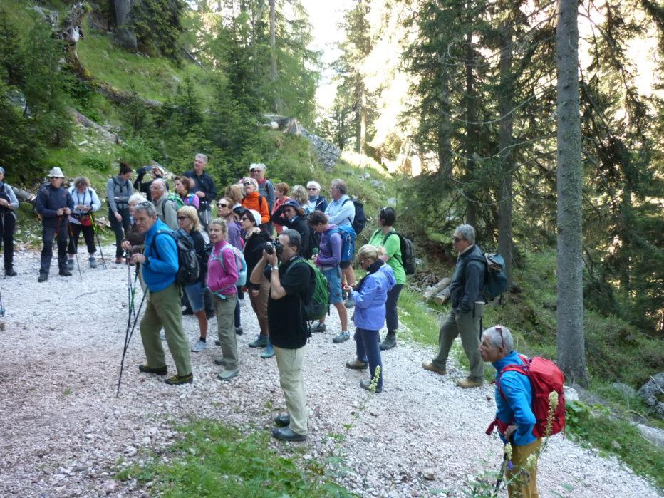 Grande successo per il trekking naturalistico di Cortina InCroda.
