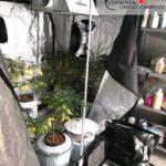 160902 comunicato (coltivazione di cannabis) - interno serra 2 con impianti di ventilazione, illuminazione, irrigazione e rilevatore ph