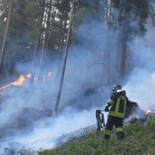Incendio di sterpaglia a Lamon